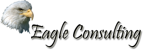 Eagle Consulting LLC Logo